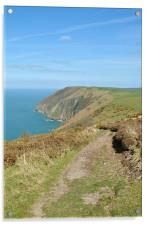 The Exmoor Coast , Acrylic Print