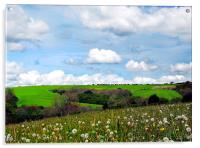 Welsh Fields of Pembrokeshire., Acrylic Print