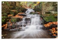Lovely Lumsdale, Acrylic Print