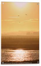 Rye Harbour Nature Reserve, Sunset, Acrylic Print