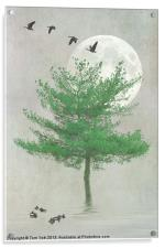 A TREE IN THE MOONLIGHT, Acrylic Print