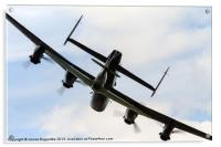 Lancasters Little Shadow, Acrylic Print