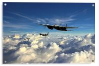 Mosquito Force , Acrylic Print