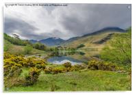 Early Morning at Buttermere, Acrylic Print