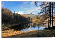 A Wonderful View of Blea Tarn, Acrylic Print