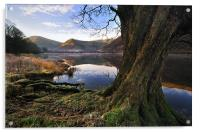 Views Of Brotherswater, Acrylic Print