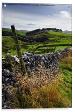 Along The Road to Pen-Y-Ghent, Acrylic Print