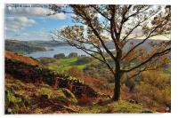 Views to windermere, Acrylic Print