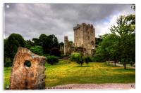 Blarney Castle and Grounds, Acrylic Print