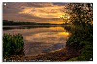 Sunrise at Whitlingham Country Park , Acrylic Print