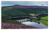 The heather of the Upper Derwent Valley, Acrylic Print