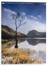 Buttermere Reflections, Acrylic Print