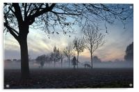 Misty afternoon in the park, Acrylic Print
