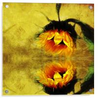 (Sunflower)- A Reflection of a Summer Day 2, Acrylic Print