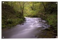 The River Wye, Millers Dale Derbyshire, Acrylic Print