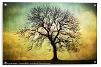 Digital Art Tree Silhouette, Acrylic Print