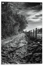 Snow Covered Track, Acrylic Print