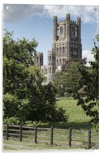 Ely Cathedral, Acrylic Print