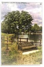 A Seat By The Thames, Acrylic Print