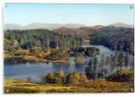 Tarn Hows The Lakes District, Acrylic Print