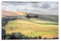 Thumper Flies Down The Coombes Valley, Acrylic Print