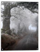 frosty morning in the lane, Acrylic Print
