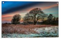 A frosty morning in Norfolk, Acrylic Print