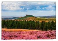 Roseberry Topping - ...Roseberry and Pines, Acrylic Print
