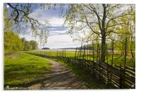 Round pole fence in spring, Acrylic Print