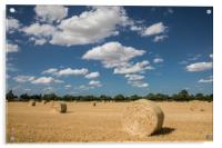 Norfolk Field in Summer with Straw Bales, Acrylic Print