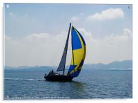 Small Yacht Large Spinnaker, Acrylic Print