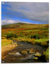 River Lyd Looking Towards Great Links Tor, Acrylic Print