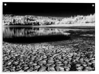 Drought at Burrator Reservoir, Acrylic Print