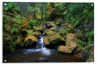 Wyming Brook with Autumn Colours, Acrylic Print