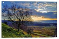 Longshaw Estate Sunset, Acrylic Print