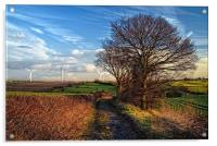 Pathway to Penny Hill, Acrylic Print