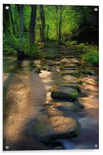 Golden Stepping Stones , Acrylic Print