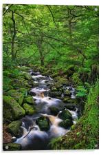 Looking Down Padley Gorge, Acrylic Print