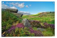 Burbage Rocks and Valley                       , Acrylic Print