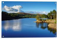 Burrator Reflections                              , Acrylic Print