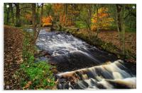 Roscoe Weir,Rivelin in Autumn                     , Acrylic Print