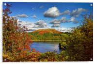 Burrator and Sheepstor In Autumn                  , Acrylic Print
