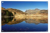 Blea Tarn, Lake District                          , Acrylic Print