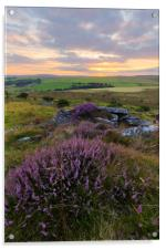 Moorland Heather, Acrylic Print