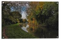 Oxford Canal in the Autumn, Acrylic Print