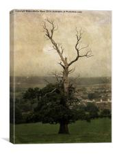 The Skeletal Tree, Canvas Print