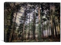 Parkhurst Trees, Canvas Print