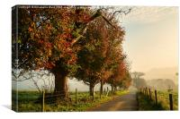 Autumn Morning Amble., Canvas Print