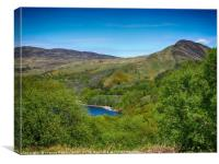 Path up Conic Hill, Loch Lomond, from Inchcailloch, Canvas Print