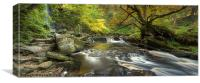 Mallyan Spout and West Beck, Canvas Print